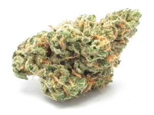 The high from Blue Dream is not overwhelming and is great for day use and social situations. Its ideal for treating conditions such as chronic pain n cancer