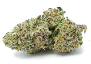 In combination with its high THC level, Purple Punch Strain is perfect for killing the effects of many conditions such as nausea, chronic pain n depression