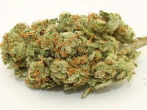 Sour Diesel, sometimes abbreviated as Sour D, is an extremely popular strain. It is distinguished by the fuel-like chemical smell of its flowers