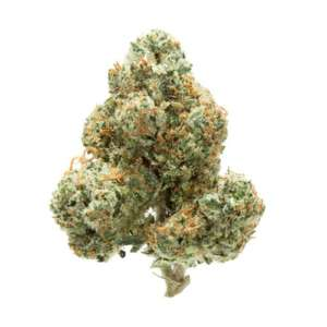 OG Kush test between19-25% THC and with up to 0.3% CBD. The intense high hits quickly with a buzzy body high and bright euphoria.