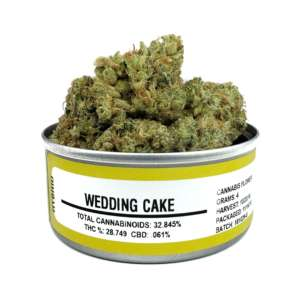 Wedding Cake Strain works as a calming agent n appetite stimulator. It is quite helpful for patients who experience regular depression-associated syndromes