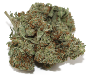 Immediately after smoking White Widow, you will experience a burst of energy and euphoria leaving you feeling uplifted, conversational, and creative